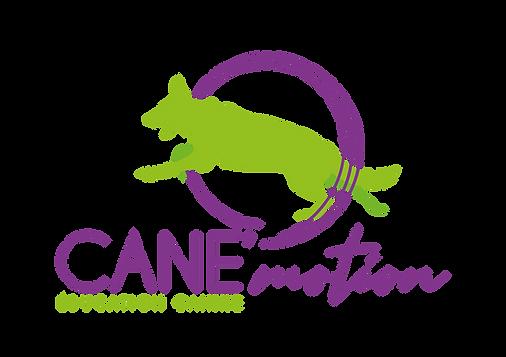 logos CANEmotion_Plan de travail 1.png