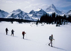 ski touring with guide