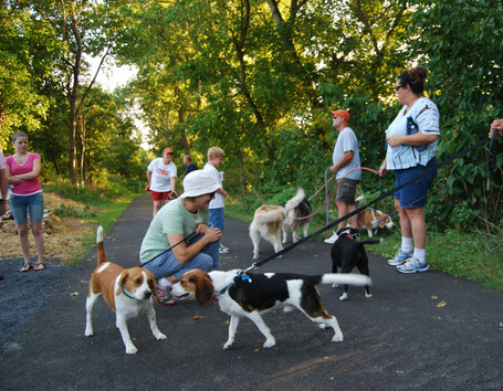 dog-park-rc-by-sandy-dog-9_edited.jpg