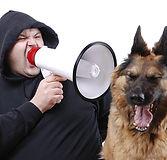 dognotlistening.jpg