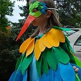 bird-580x388.jpg