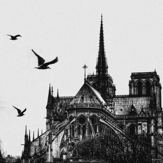 Notre Dame.jpg