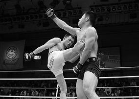 mixed-martial-arts-1314503_1920_edited.j