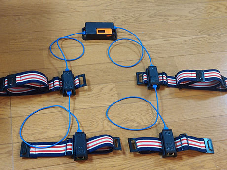 sensor_belt4.jpg