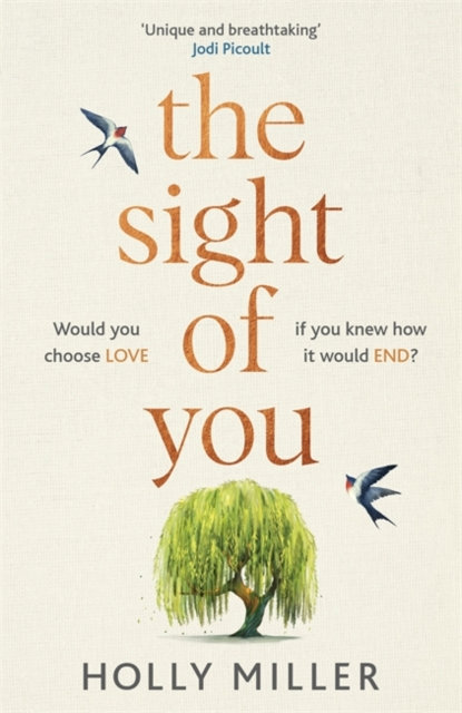 The Sight of You : the love story of 2020 that will break your heart