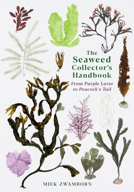 The Seaweed Collector's Handbook : From Purple Laver to Peacock's Tail