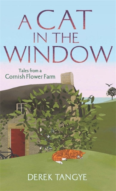 A Cat in the Window : Tales from a Cornish Flower Farm