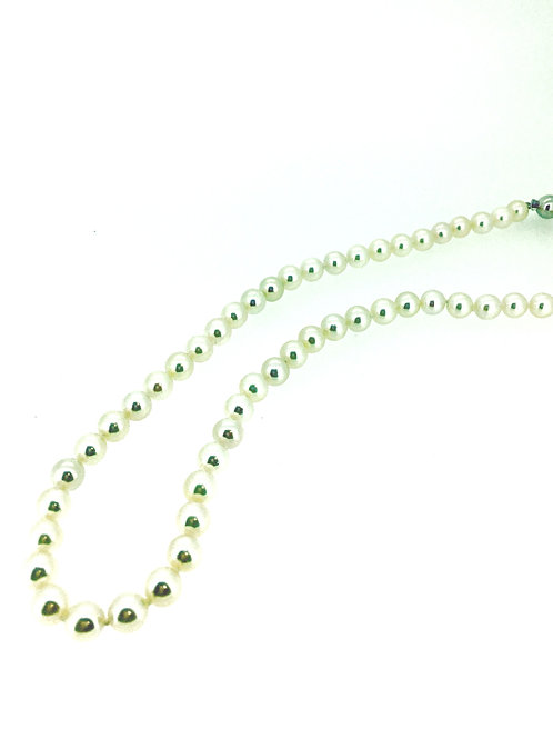 Akoya Pearl white strand
