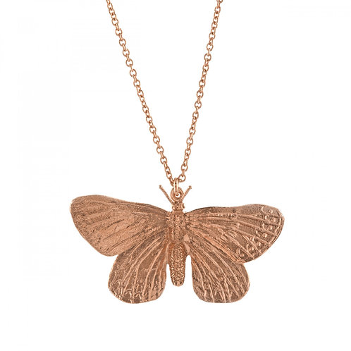 Rose gold plated Duke of Burgundy Butterfly Necklace