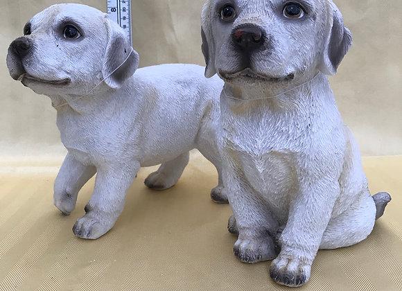 Lab Pups - Single