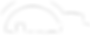 BlueSG Logo (White).png