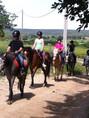balade cheval poney centre equestre à collias vacances été gorge du gardon