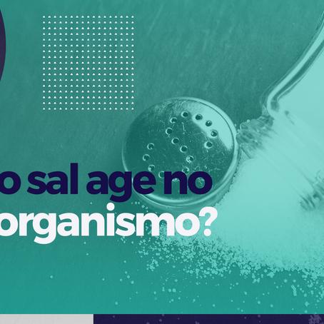 Como o sal age no nosso organismo?