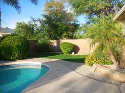 4136 Backyard view