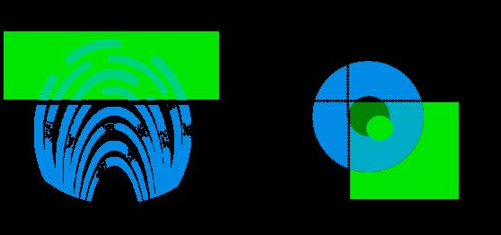 Empreinte : pointeuse biométrique