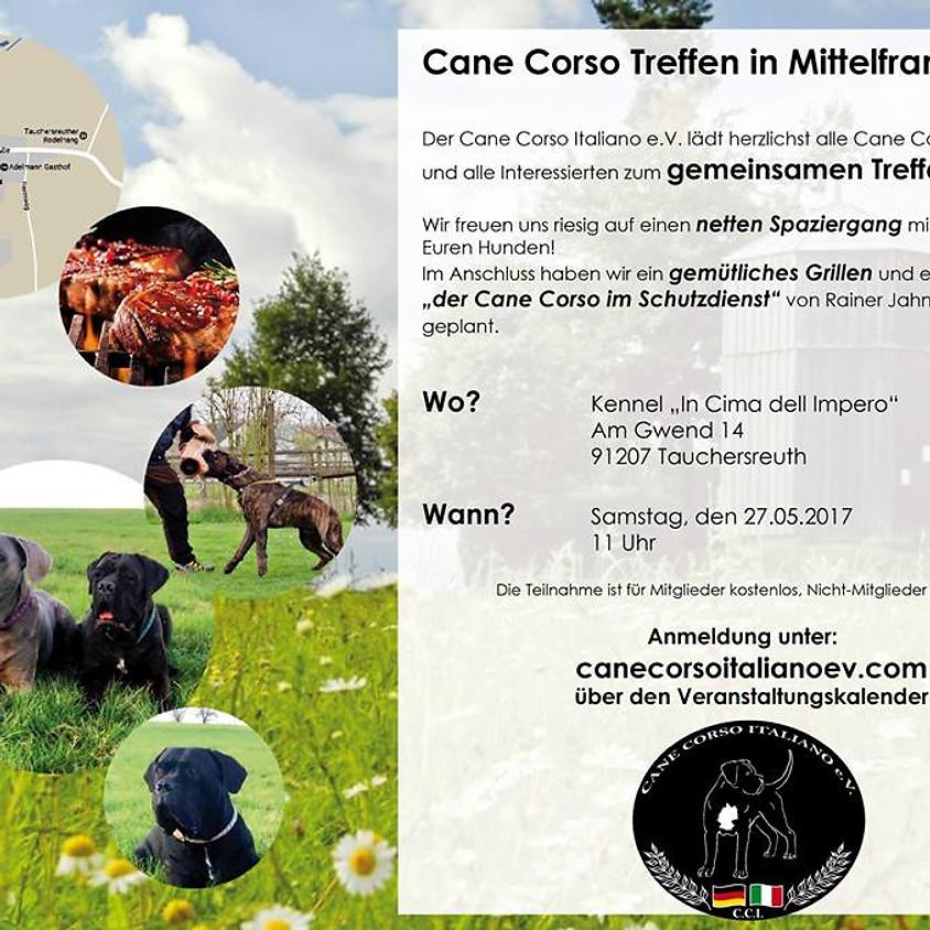 Cane Corso Treffen Mittelfranken