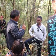 Excursion to Sacret Forest