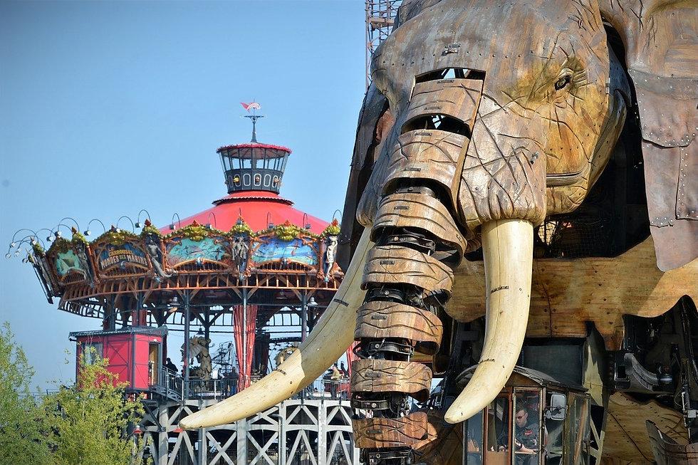 Elephant-sem_0012066_edited.jpg