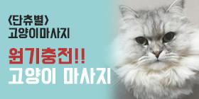 <단츄별>고양이 원기충전 마사지