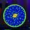 "Thumbnail: Blue Fungia 10"" UV original"