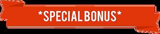 special-bonus-trans.png