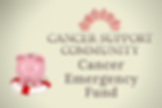 Cancer Support Community Emergency Fund