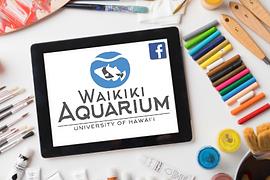 Waikiki Aquarium Thumbnail.png
