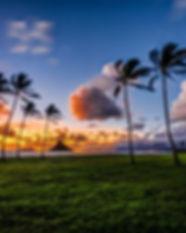 HawaiiBreezes.jpg