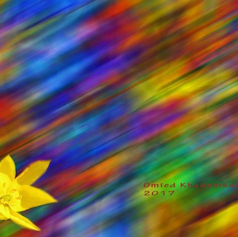 Die gelbe Blume