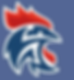 logo bleu claire.png
