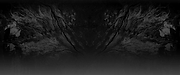 Abstract%20Desert_edited.png