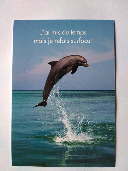 Carte dauphin surface