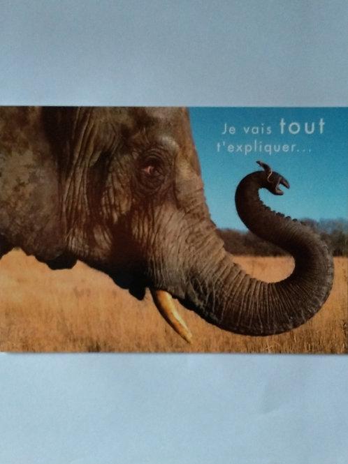 Carte éléphant je vais tout t'expliquer...