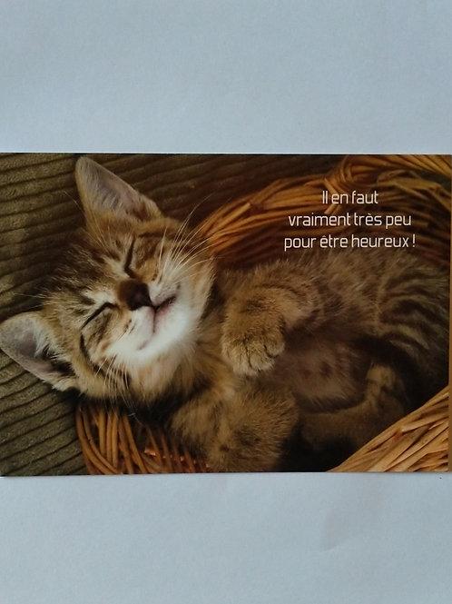 Carton chaton heureux