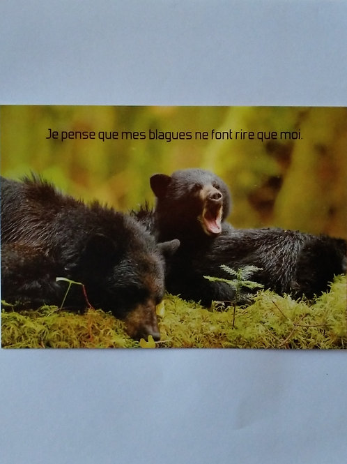 Carte ours blagues