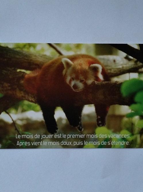 Carte panda vacances