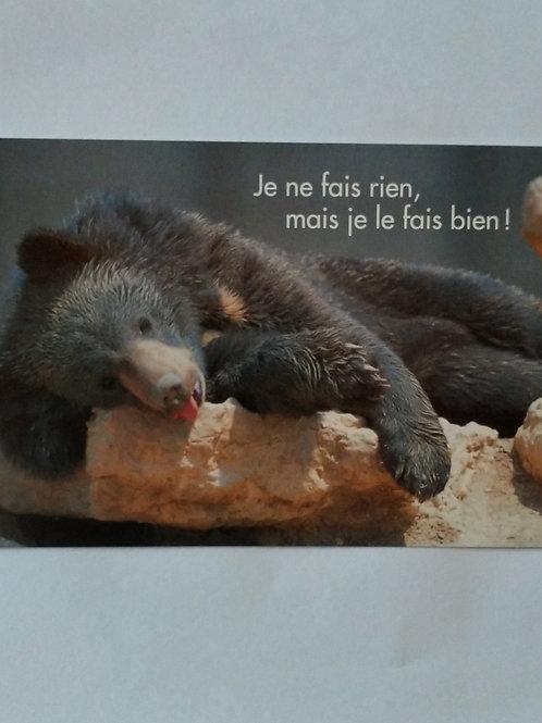 Carte ours fait rien