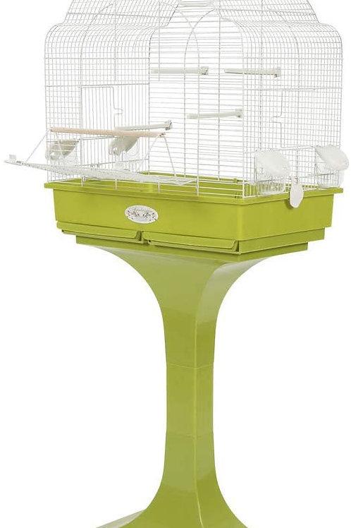 Cage Arasbesque louise Olive
