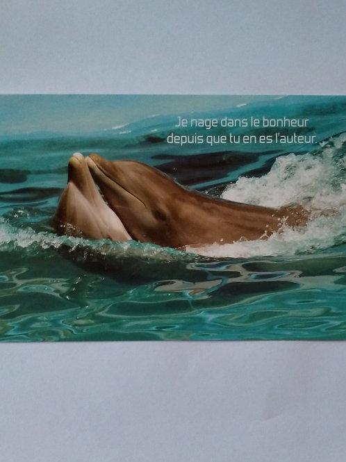 Carte dauphin bonheur