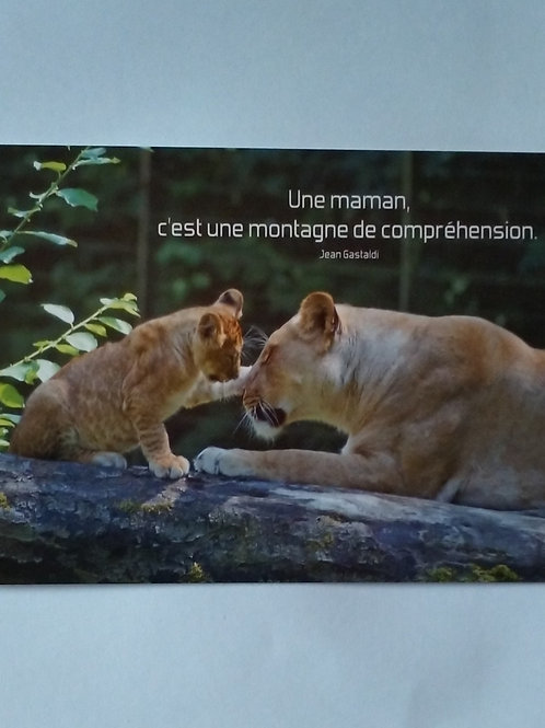 Carte lionne maman