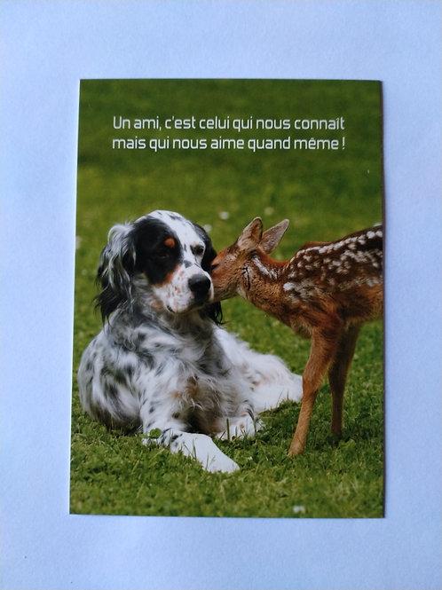 Carte chien faon ami
