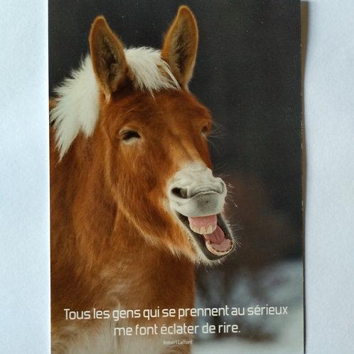 Carte poney rire