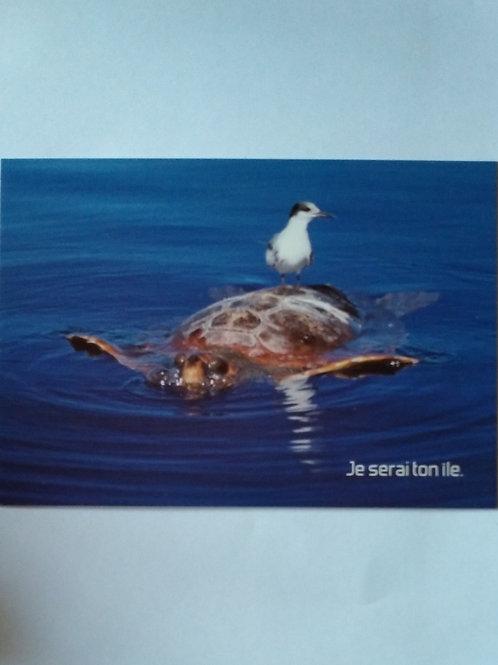 Carte tortue je serai ton île