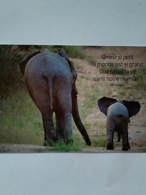 Carte éléphant maman