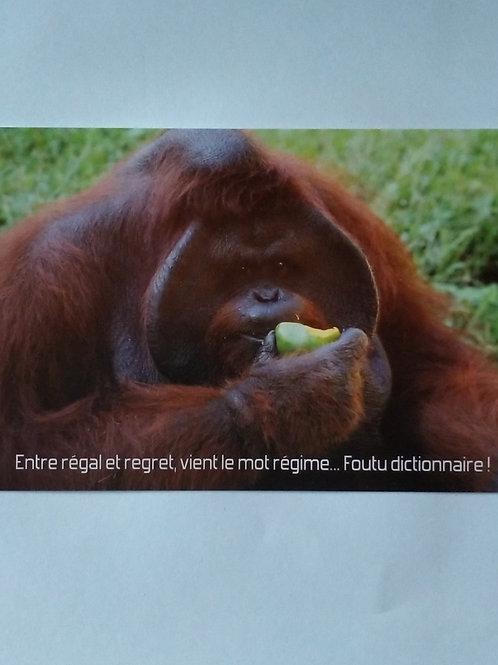 Carte singe régime