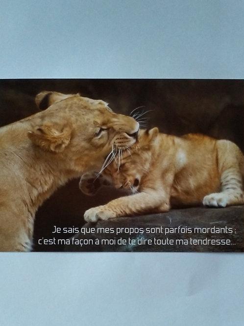 Carte lions mordants