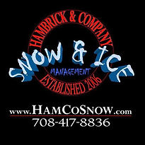 Hamco Snow Logo.jpeg
