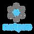 netpro logo no background.png