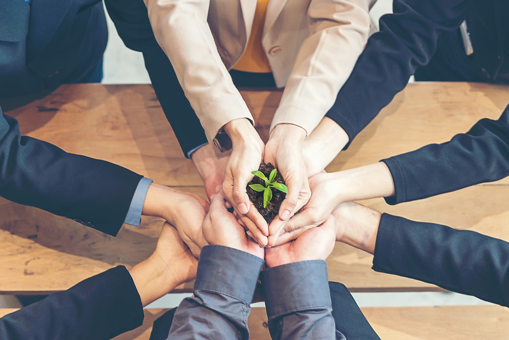 Collective climate action, sustainable business relationships