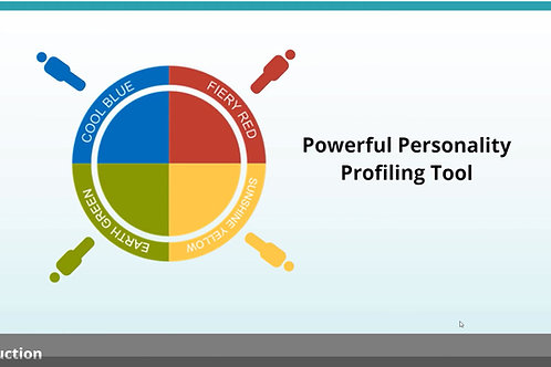 Insights Discovery Profile, 30 minute online coaching and access to e-learning